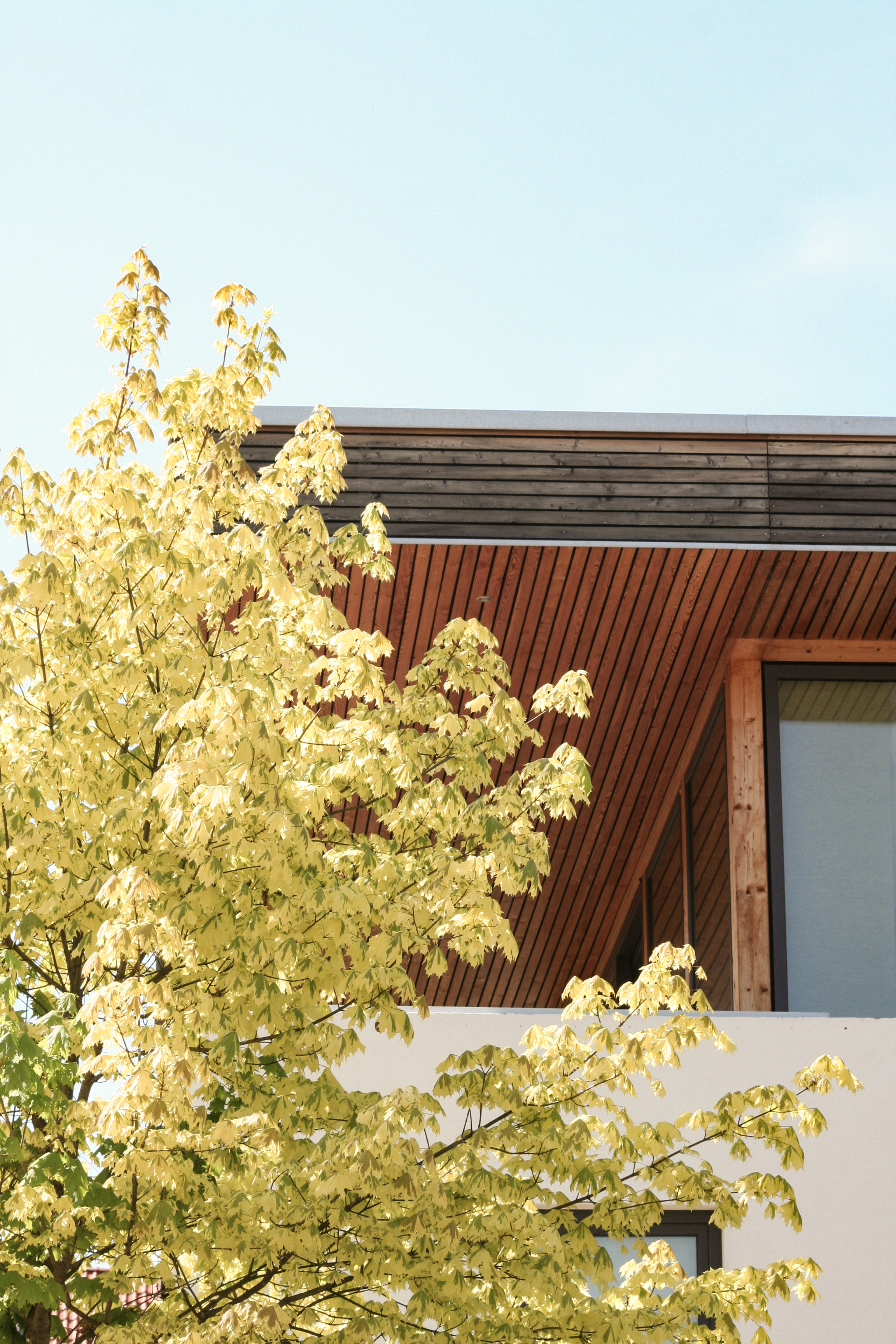 Wohnhaus Breite Strasse // Wernigerode